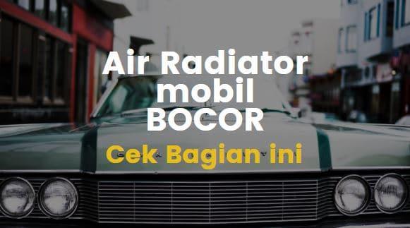 Yuk Intip 6 Penyebab Air Radiator Mobil Keluar Terus Dari Selang